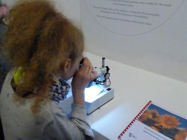 muzeum_05.JPG